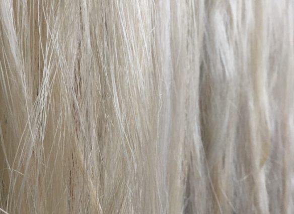 fibres d'abaca
